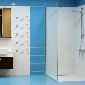 begehbare dusche wichtig ist die planung glasprofi24. Black Bedroom Furniture Sets. Home Design Ideas
