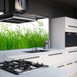küchenrückwand aus glas als spritzschutz | glasprofi24 - Küche Wandpaneel Glas